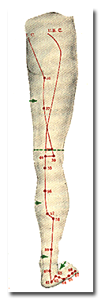a_5backleg